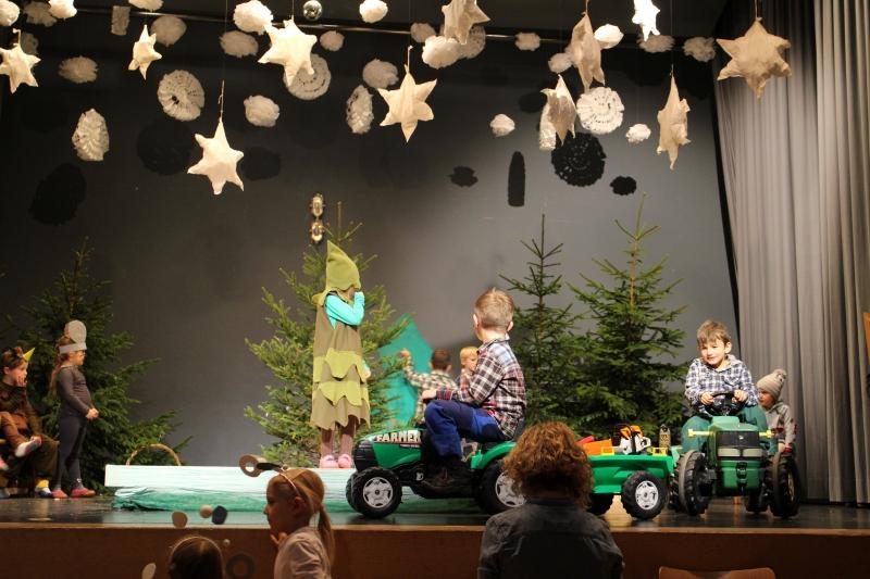 Allerkleinste Tannenbaum.Kindergarten